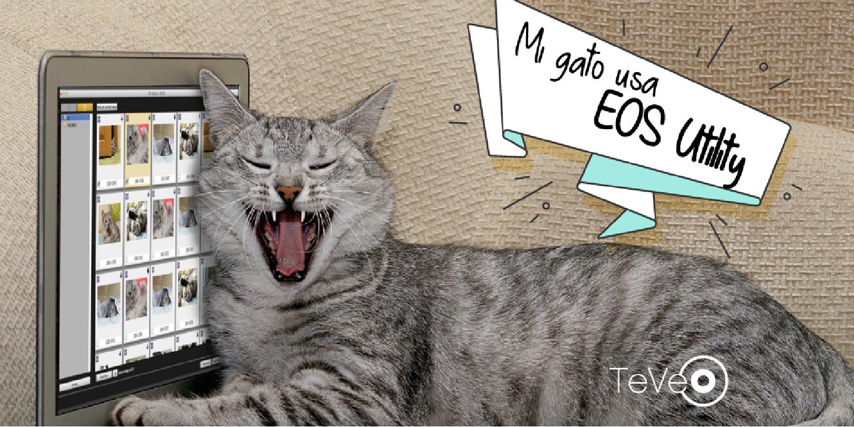 Mi gato usó EOS Utility... ¿Porqué tú no?
